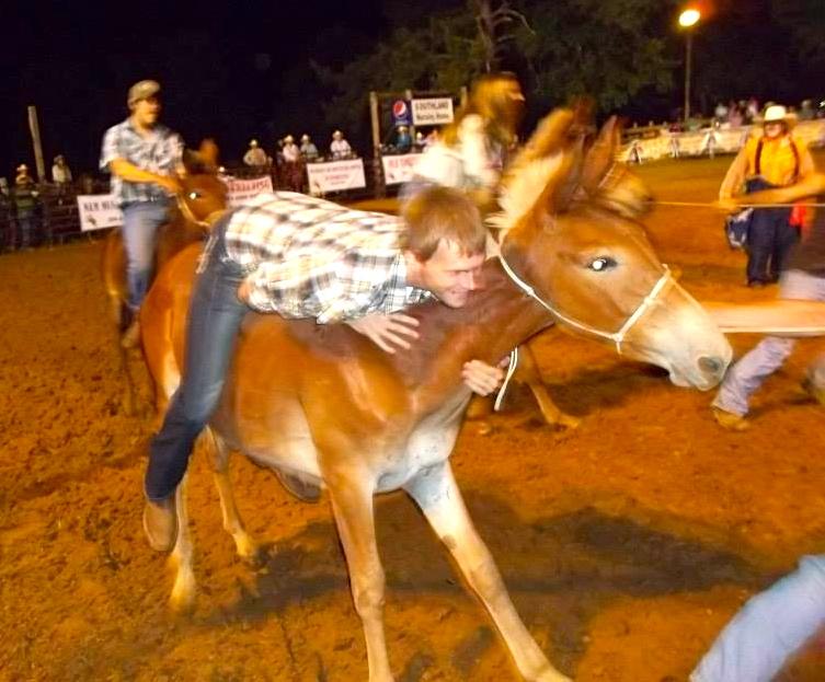 Rodeo Living Democracy